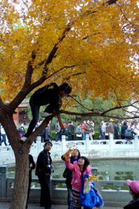 Rude & unruly Chinese tourists (China Daily)